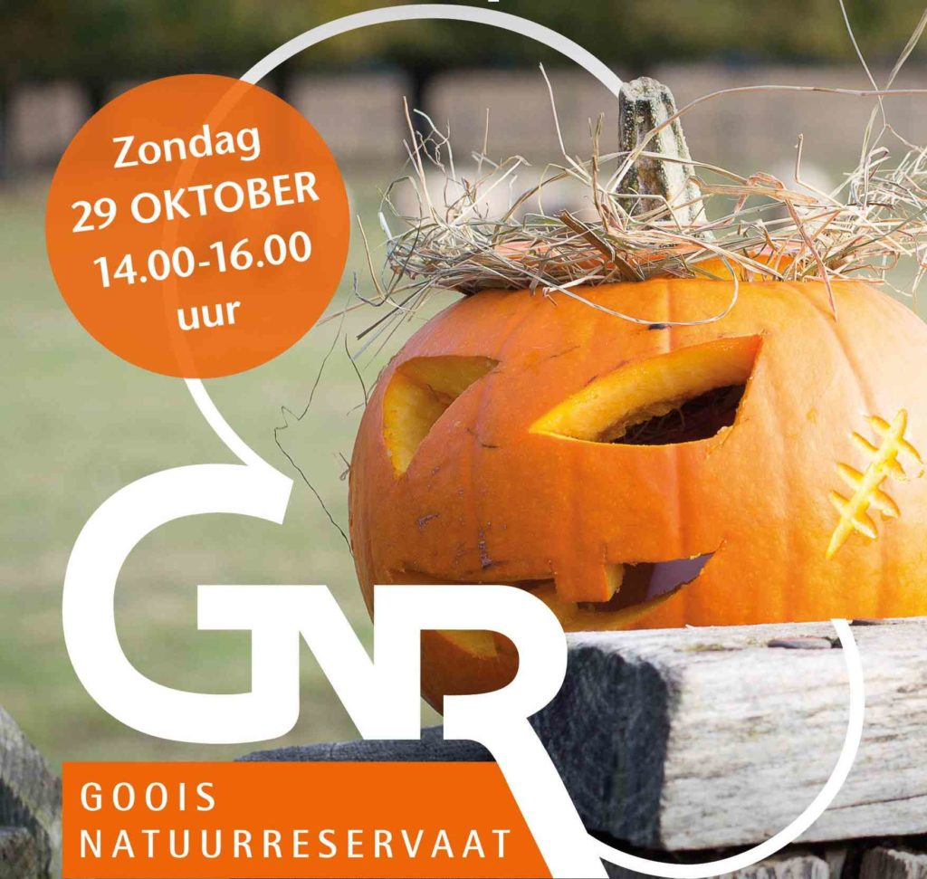 Halloween griezelfeest in de Schaapskooi