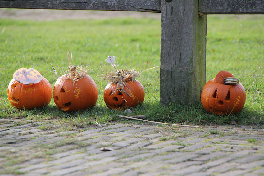 Halloween in de Schaapskooi en op de Gijsbrecht